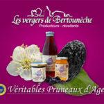 Vergers-Bertouneche00